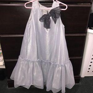 H&M Little Girls Gray Shimmery Tulle Dress